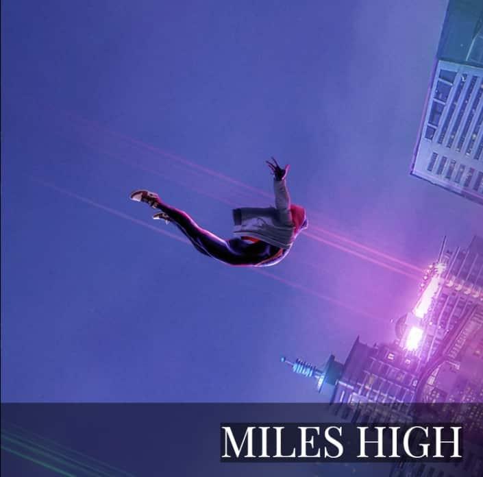 NFT - Miles High Boss Logic